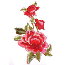 Fleurs rose rouge thermo.40cm