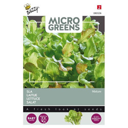 Graines Micro greens salade mix