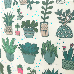 Paperpatch hygge cactus